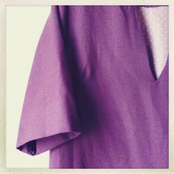 BBW Shift Dress Sleeve